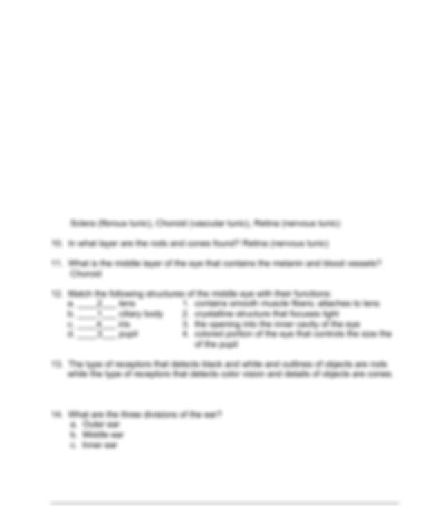 Ch 17 - Special Senses - KEY.pdf - Medical Anatomy and ...