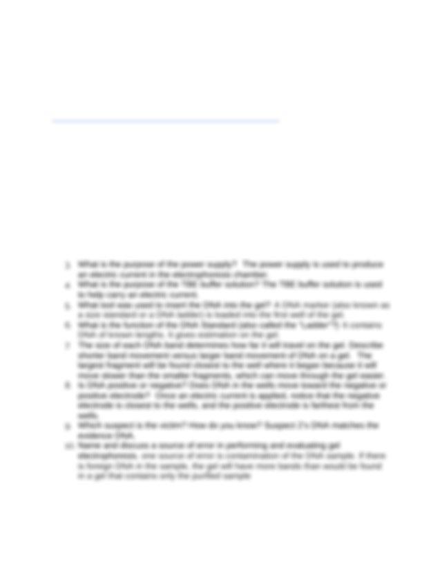 Copy of Gel Electrophoresis Virtual Lab - Gel ...