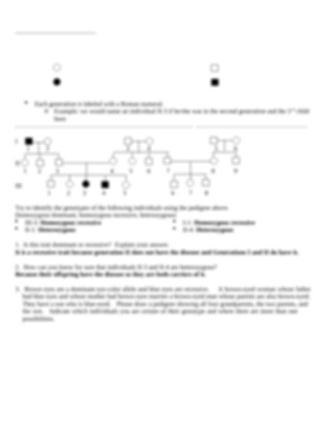Pedigree Worksheet KEY Huntingtons Disease I 1 2 II 124 5 ...