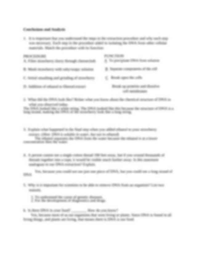 DNA strawberry extraction lab STUDENT handout.docx - Name ...
