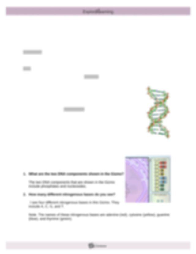 Student Exploration Building Dna Gizmo Answer Key : Gizmo ...