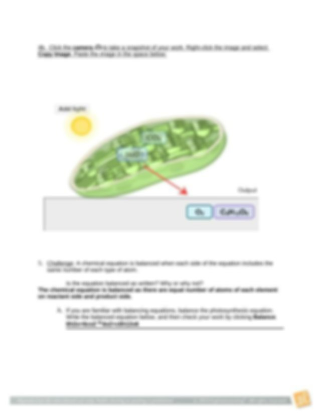 Student Exploration - Cell Energy Cycle (2).doc - Name ...