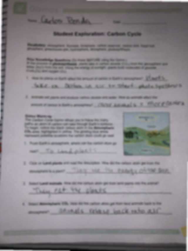 carbon cycle - student exploration.pdf - | Course Hero