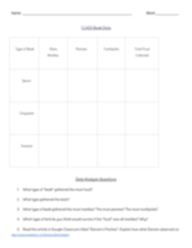 Bird_Beak_Lab - Name Block Bird Beak Lab Instructions You ...