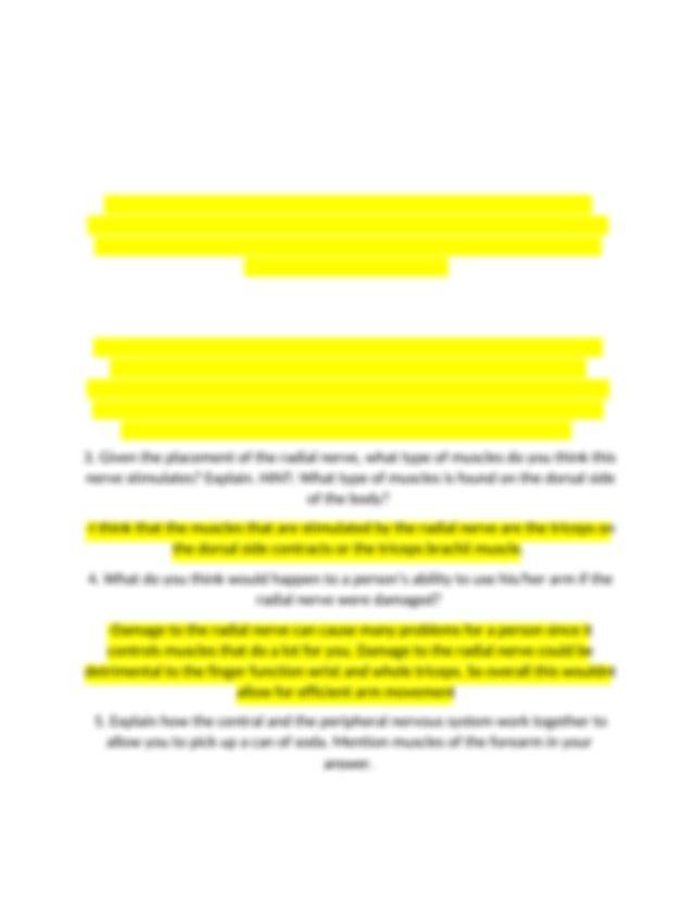 4.2.6 conclusion questions.docx - 4.2.6 Conclusion ...