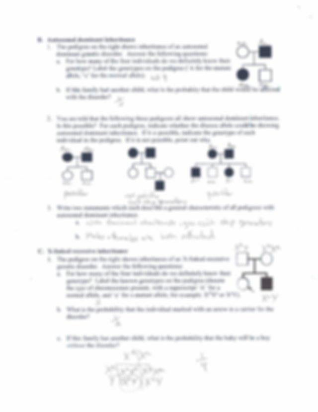 Pedgree worksheet KEY - Chapter 6 Pedigree Analysis of ...