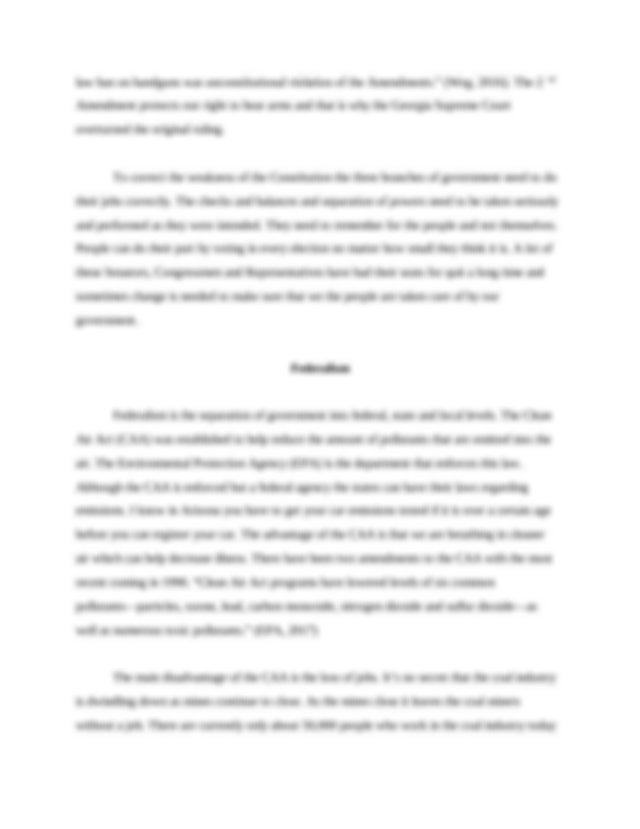 POL 201 final paper.docx - The Americas Democracy Your ...