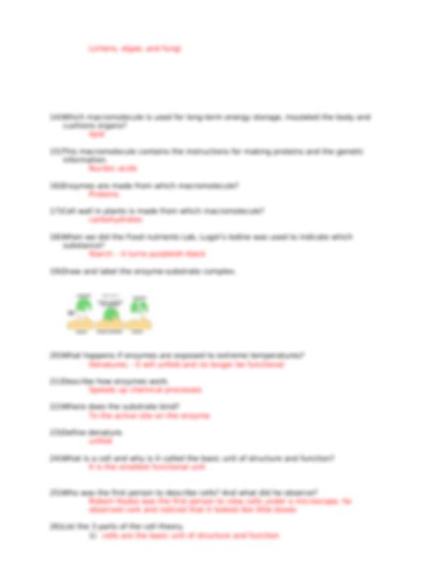 Biology STAAR EOC BIOLOGY STUDY GUIDE KEY.docx - Biology ...