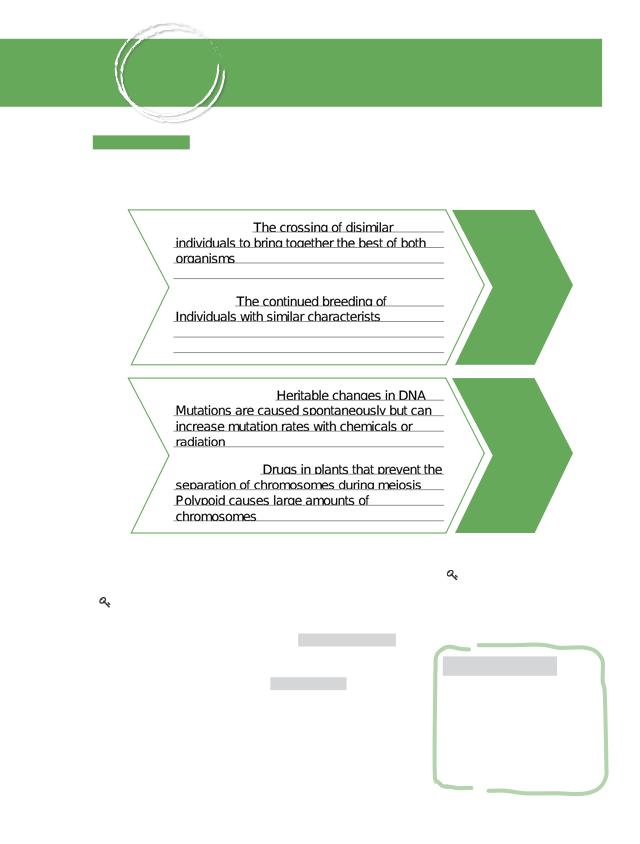 BIO_CH16_Foundations.pdf.pdf - CHAPTER\u200216 LESSON 1 ...