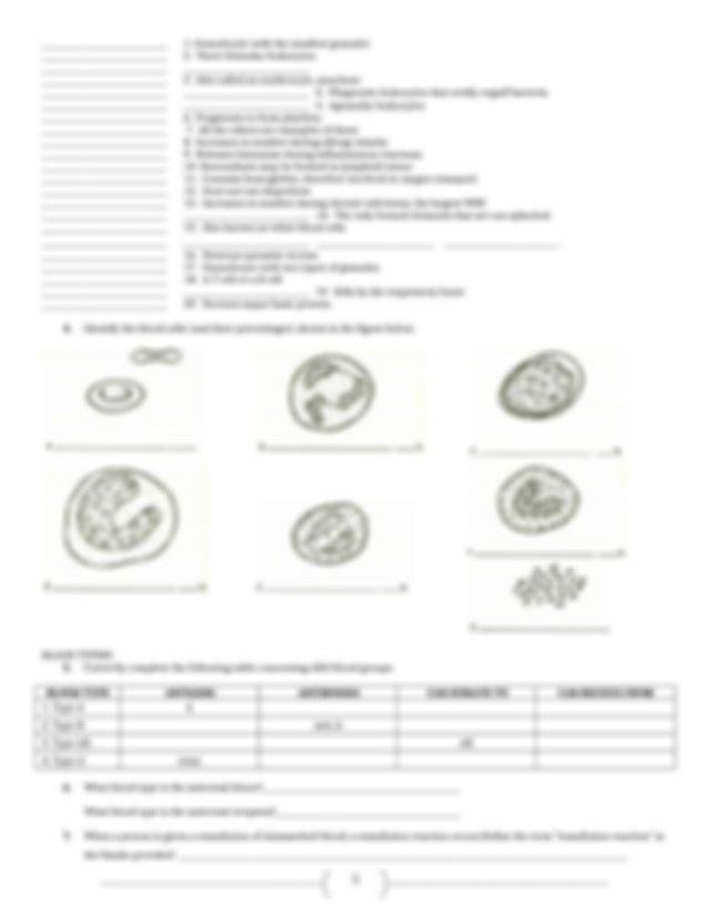 SG FMU ANATOMY.Chapter 11.12 Cardiovascular.Blood ...