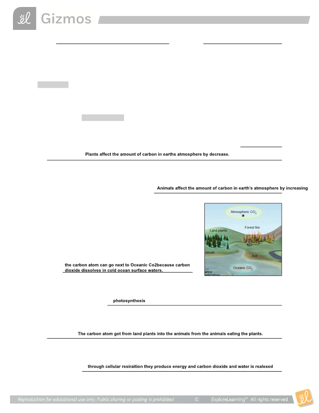 CarbonCycleSE.pdf - Name Date Student Exploration Carbon ...