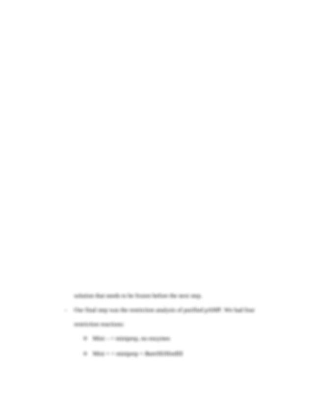 Censorship persuasive essay prompt