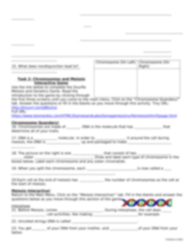 Meiosis WebQuest Student Handout Updated.docx - MEIOSIS ...
