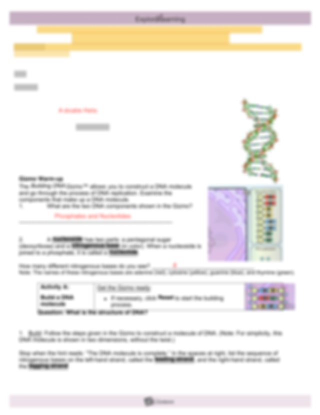 Building DNA Gizmo pdf - Name Date Student Exploration ...