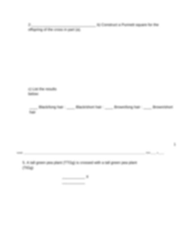 Dihybrid Crosses Worksheet.docx - NAME PER Dihybrid ...