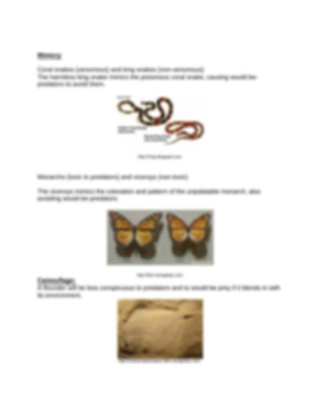 worksheet-evidence-and-mechanisms-of-evolution-final.pdf ...