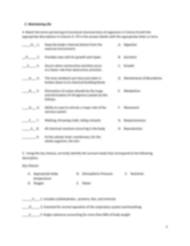 Introduction to Anatomy & Physiology Worksheet.pdf ...