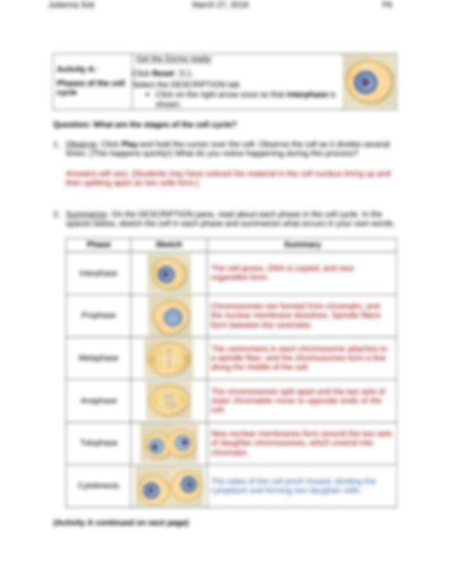 celldivision gizmo.docx - Julianna Sok P6 Vocabulary cell ...