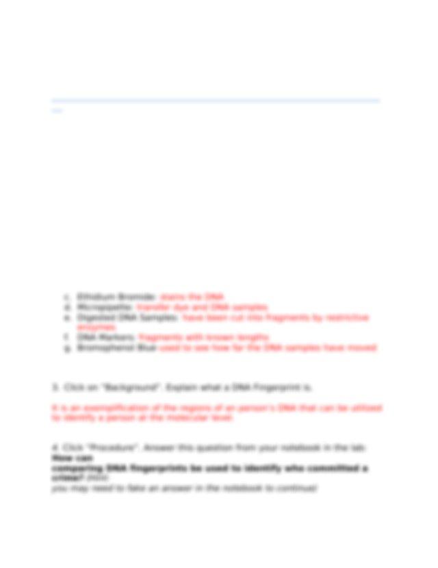 gel electrophoresis virtual lab Bell - Name(s_Date Ensure ...