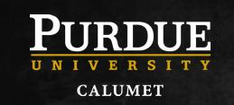 Purdue North Central logo
