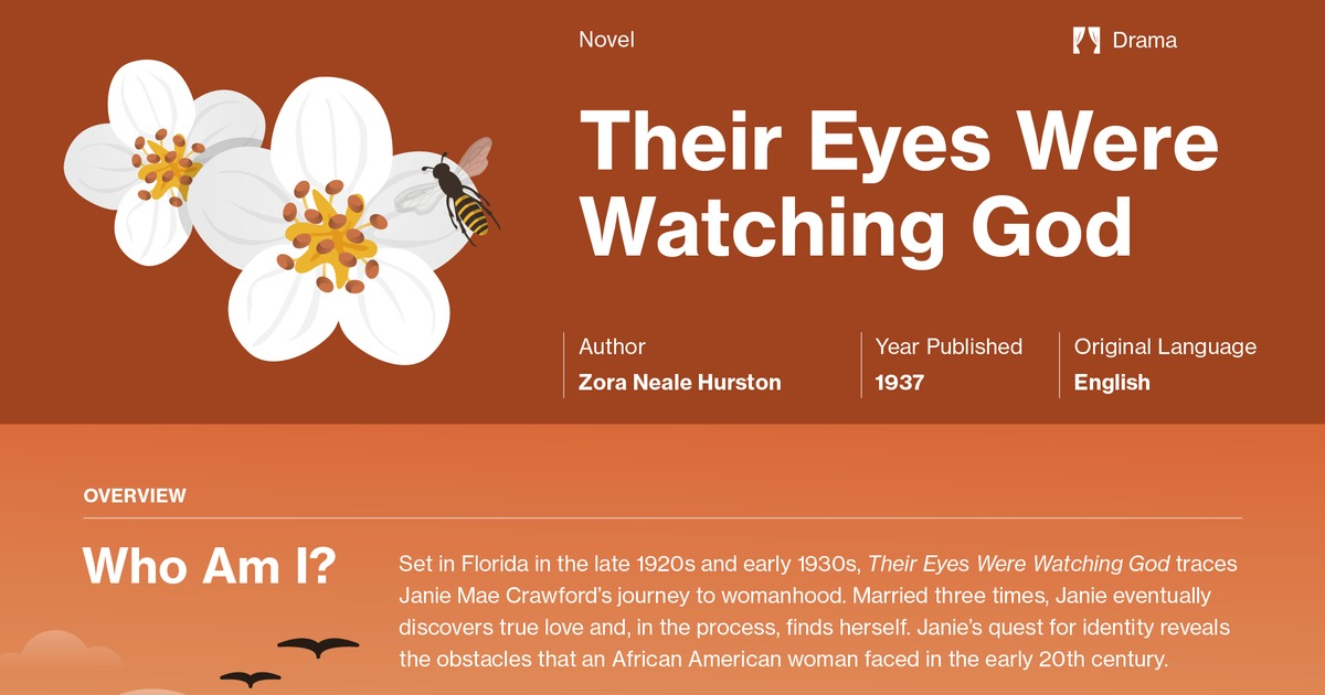 an analysis of the topic of the novel their eyes were watching god by zora neale hurston Their eyes were watching god by zora neale hurston home / their eyes were watching god analysis the quest for true love—and for the rest of the novel.