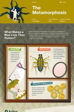 The Metamorphosis infographic thumbnail