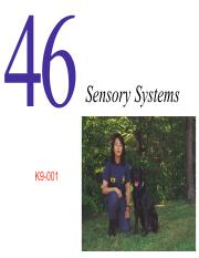 Lecture 6-Sensory Systems.pdf