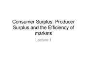 Consumer Surplus, Producer Surplus and the Efficiency