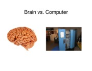 2008 Brains and computers