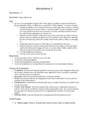Microtheme 3 Assignment Sheet.docx