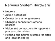 Lec 3-Neural systems