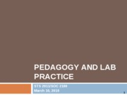 Pedagogy and lab practice 031010