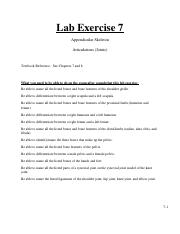 137labexercise7.pdf
