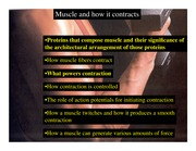 BIO 365R Lecture 14--Muscle I