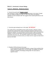 Human Biology BIOL 110 DLB FALL 2014 Worksheet 9  complete
