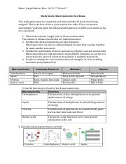 BIO- Chemistry of Life Study Guide Questions.docx