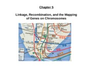 Chapter 5 - Linkage, Recombination, and the Mapping of Genes on Chromosomes - Fall 2015