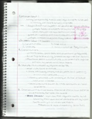 Criminal Justice Types of Law Notes