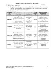 Ch05 Worksheets.docx end