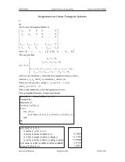 Assignment on Linear Triangular Systems.pdf