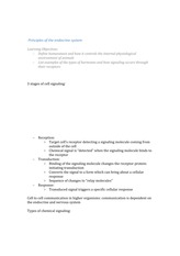 Class Note Principles of The Endocrine System