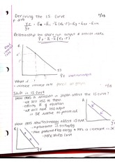 Types of Curves Notes