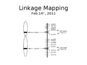 Lecture_14_Mapping_2011 (1)