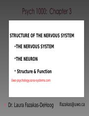chapter 3A nervous system 1
