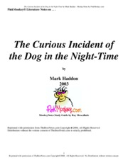 CuriousIncidentDogNightTime (Answers)