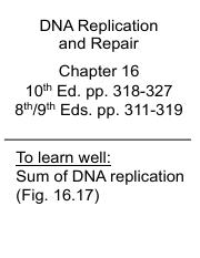 Lecture 30 DNA Replication 2015