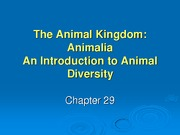 chapter29%20-%20animal%20diversity%20Spring%202009%20_1_