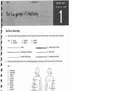 nervous system. Black Bedroom Furniture Sets. Home Design Ideas