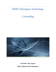 PBMT Henriquez Technology Consulting