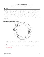 15 The Cell Cycle-S.docx